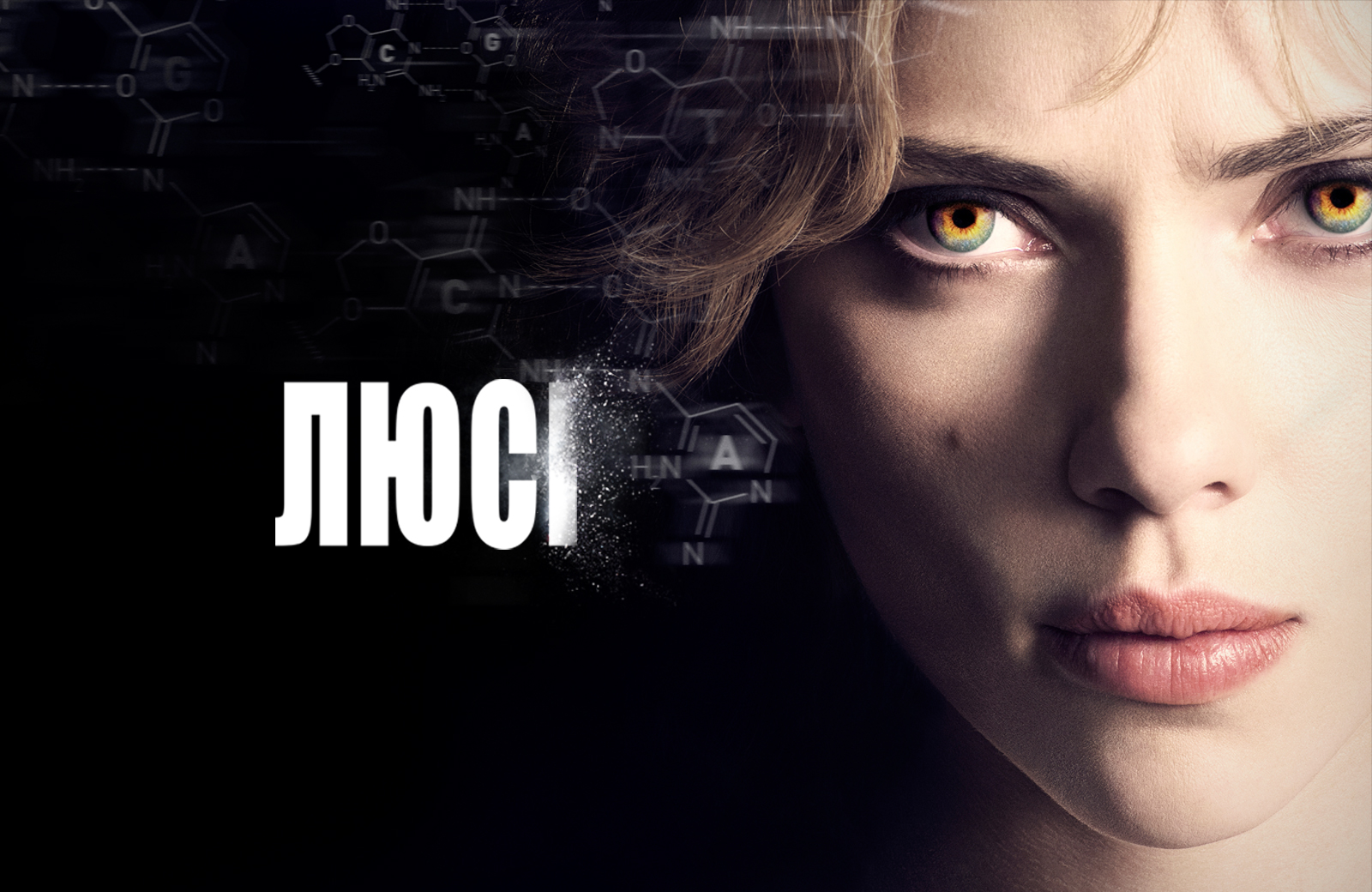 «Люси Фильм» — 2008