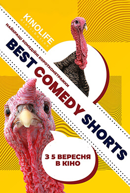 Best Comedy Shorts